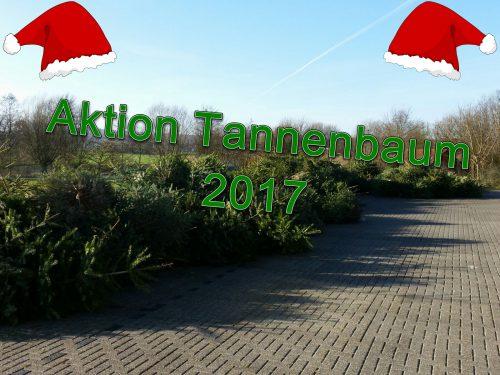 aktion-tannenbaum-2017